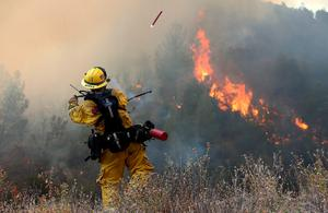 CLEARLAKE, CA - AUGUST 03:  A Cal Fire firefighter throws a flare into dry brush during a backfire operation to head off the Rocky Fire on August 3, 2015 near Clearlake, California. Nearly 3,000 firefighters are battling the Rocky Fire that has burned over 60,000 acres has forced the evacuation of 12,000 residents in Lake County. The fire is currently 12 percent contained and has destroyed at least 14 homes. 6,300 homes are threatened by the fast moving  blaze.  (Photo by Justin Sullivan/Getty Images)