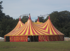Circus act: Frances Burscough and sons ended up in the VIP seats