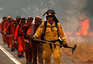CLEARLAKE, CA - AUGUST 02: A Cal Fire firefighter leads a group of inmate firefighters during a burn operation to head off the Rocky Fire on August 2, 2015 near Clearlake, California. Over 1,900 firefighters are battling the Rocky Fire that has burned over 46,000 acres since it started on Wednesday afternoon. The fire is currently five percent contained and has destroyed at least 14 homes. (Photo by Justin Sullivan/Getty Images)