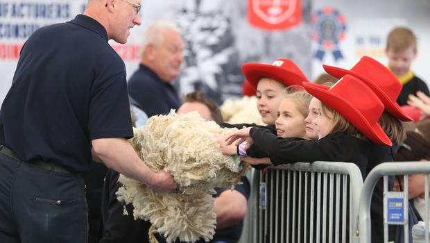 PressEye-Northern Ireland- 16th May 2018-Picture by Brian Little/ PressEye  Allen McIntosh of Ulster Wool shows a fleece to school children at the Sheep Shearing competition  on the  First day of the 2018 Balmoral Show, in partnership with Ulster Bank, at Balmoral Park  Picture by Brian Little/PressEye