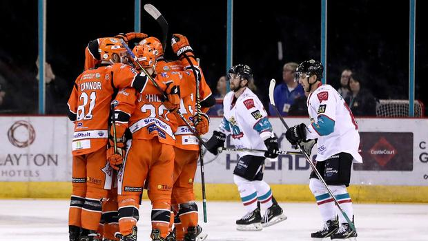 The Sheffield Steelers celebrate scoring in against the Belfast Giants at the SSE Arena (William Cherry/Presseye)
