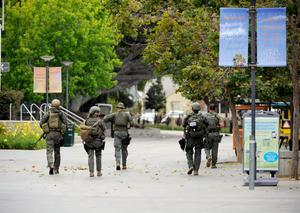 SANTA MONICA, CA - JUNE 07:  Los Angeles County SWAT team members search the grounds of Santa Monica College near the library after multiple shootings were reported on the campus June 7, 2013 in Santa Monica, California. According to reports, at least one person has died, four people hospitalized, and a suspect was taken into custody. (Photo by Kevork Djansezian/Getty Images)