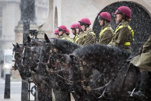 Members of the Household Cavalry in London, as bitterly cold winds continue to grip much of the nation (Stefan Rousseau/PA)