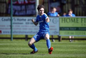 High hopes: Ryan Mayse has been impressing since joining the Swifts