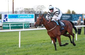 Northern Ireland Festival of Racing at Down Royal Racecourse - Day 1 Race 6 (3:45) Robinson Services Handicap Chase   Winner, Eddie O'Connell on Decade Player