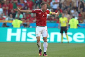 Hungary's Balazs Dzsudzsak celebrates after scoring his side's second goal during the Euro 2016 Group F soccer match between Hungary and Portugal at the Grand Stade in Decines-Charpieu, near Lyon, France, Wednesday, June 22, 2016. (AP Photo/Laurent Cipriani)