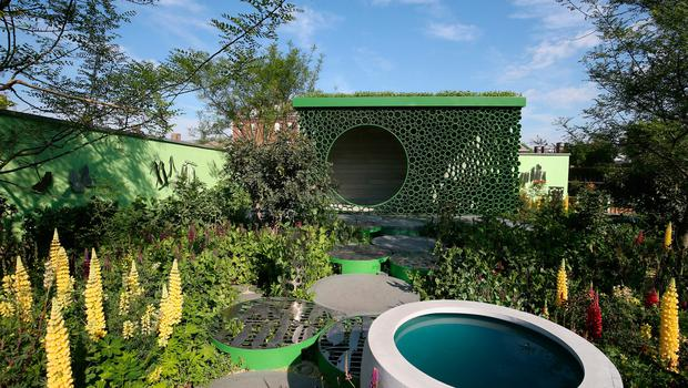 The Seedlip Garden at the RHS Chelsea Flower Show at the Royal Hospital Chelsea, London. PRESS ASSOCIATION Photo. Issue date: Tuesday May 22, 2018. Photo credit should read: Jonathan Brady/PA Wire
