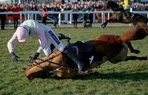 2015 Cheltenham Festival, Prestbury Park, Cheltenham, England 10/3/2015 OLBG Mares' Hurdle Ruby Walsh and Annie Power fall at the final hurdle  Mandatory Credit ?INPHO/Dan Sheridan