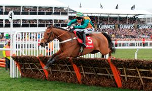 Cole Harden ridden by Gavin Sheehan jumps the last fence on the way to winning the Ladbrokes World Hurdle, on St Patrick's Day during the Cheltenham Festival at Cheltenham Racecourse.  PRESS ASSOCIATION Photo. Picture date: Thursday March 12, 2015. See PA story RACING Cheltenham. Picture credit should read: Nick Potts/PA Wire. RESTRICTIONS: Editorial Use only, commercial use is subject to prior permission from The Jockey Club/Cheltenham Racecourse. Call +44 (0)1158 447447 for further information.