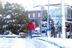 Press Eye Belfast - Northern Ireland 10th December 2017  A man walks his dog in Fourwinds outside Belfast as snow continues to lie across Northern Ireland.  Picture by Jonathan Porter/PressEye.com