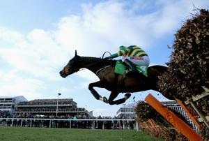 CHELTENHAM, ENGLAND - MARCH 11:  Barry Geraghty on Jezki jumps the last on his way to victory in The Stan James Champion Hurdle Challenge Trophy during The Festival Champion Day at Cheltenham Racecourse on March 11, 2014 in Cheltenham, England.  (Photo by Richard Heathcote/Getty Images)