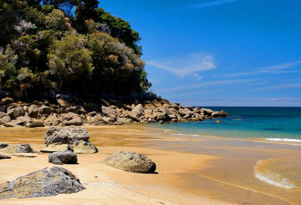 A golden beach in Abel Tasman National Park, New Zealand