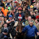 Bobs Worth and jockey Barry Geraghty after winning the Betfred Cheltenham Gold Cup March 15, 2013