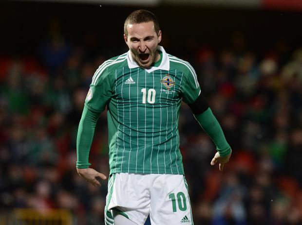 Martin Patterson screams in disbelief at another wasted chance during Tuesday's 2014 World Cup qualifier match between Northern Ireland and Israel at Windsor Park, Belfast