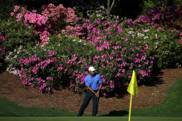 AUGUSTA, GA - APRIL 10: Tiger Woods of the United States chips onto a green during a practice round prior to the start of the 2013 Masters Tournament at Augusta National Golf Club on April 10, 2013 in Augusta, Georgia. (Photo by Andrew Redington/Getty Images)