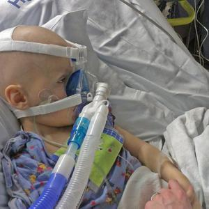 Oscar Knox in hospital from Twitter in October, 2012