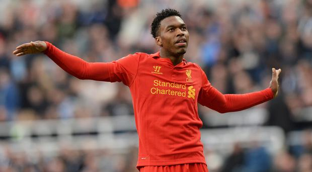 Chomping at the bit: Daniel Sturridge of Liverpool celebrates after snatching a goal at St James' Park