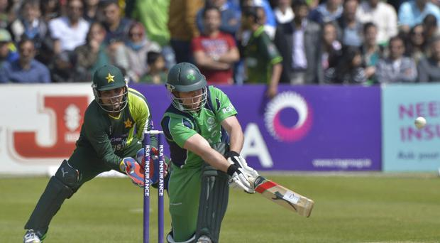 Ireland's Gary Wilson admits he enjoys partnering Ricky Ponting in county cricket with Surrey