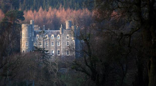 The picturesque treescape of Castlewellan Forest Park