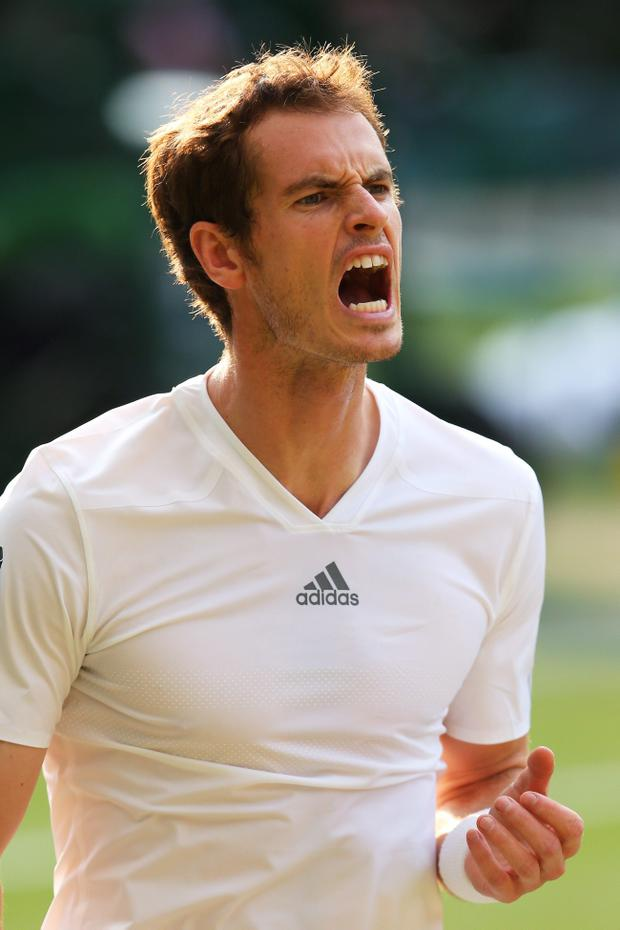 Scottish tennis ace Andy Murray reacts during the Gentlemen's Singles semi-final match against Jerzy Janowicz of Poland