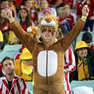 A British and Irish Lions fan in the stands before the Third Test match at the ANZ Stadium