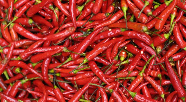 A 'highly intoxicated' immigrant suspected of entering the US illegally in truck full of chilli
