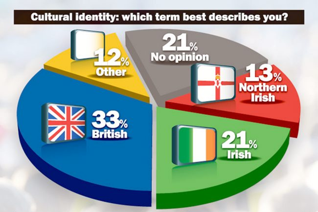 Cultural identity: which term best describes you?
