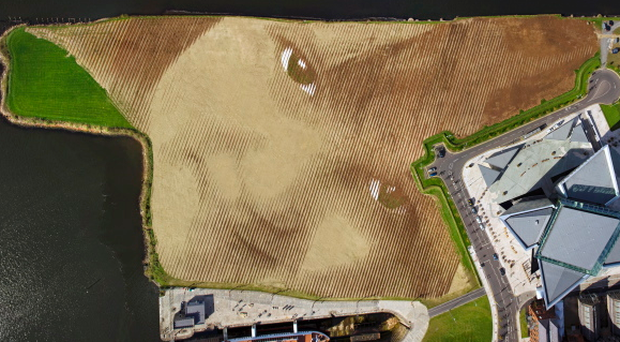 Wish - the largest land-art portrait in the UK and Ireland