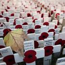 Hundreds of small crosses bearing a poppy planted in the Field of Remembrance