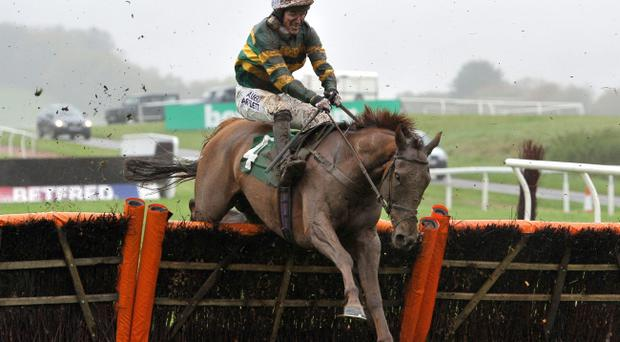 El Macca ridden by Tony McCoy during the RABI Gateway Project Maiden Hurdle Race at Chepstow Racecourse, Monmouthshire
