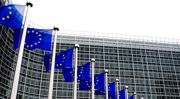 Northern Ireland's parties and politicians are lining up for Euro election bloodbath. Pic EU flags in Brussels