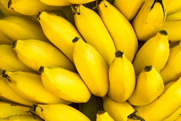 The world's supply of bananas is under threat from plagues of bugs and fungal infections, researchers have said