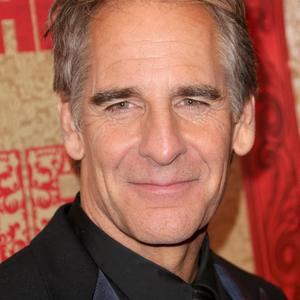 LOS ANGELES, CA - JANUARY 12: Actor Scott Bakula attends HBO's Post 2014 Golden Globe Awards Party held at Circa 55 Restaurant on January 12, 2014 in Los Angeles, California. (Photo by Frederick M. Brown/Getty Images)