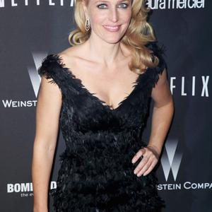 BEVERLY HILLS, CA - JANUARY 12: Actress Gillian Anderson attends The Weinstein Company & Netflix's 2014 Golden Globes After Party presented by Bombardier, FIJI Water, Lexus, Laura Mercier, Marie Claire and Yucaipa Films at The Beverly Hilton Hotel on January 12, 2014 in Beverly Hills, California. (Photo by Ari Perilstein/Getty Images for The Weinstein Company)