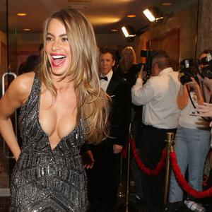 LOS ANGELES, CA - JANUARY 12: Actress Sofia Vergara attends HBO's Post 2014 Golden Globe Awards Party held at Circa 55 Restaurant on January 12, 2014 in Los Angeles, California. (Photo by Mike Windle/Getty Images)