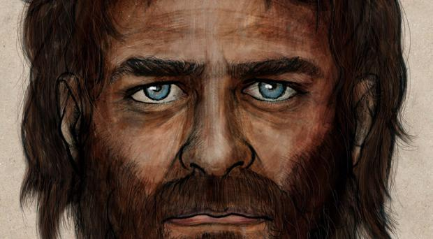 An artist's impression of the face of a 7,000 year-old man, reconstructed from his skeleton as experts were astonished to find a combination of African and European genes in the ancient hunter gatherer, who they christened La Brana. Pelopanton/CSIC/PA Wire