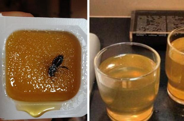 A bee in a portion of honey and water poured from the taps in one journalist's room have been circulated on Twitter