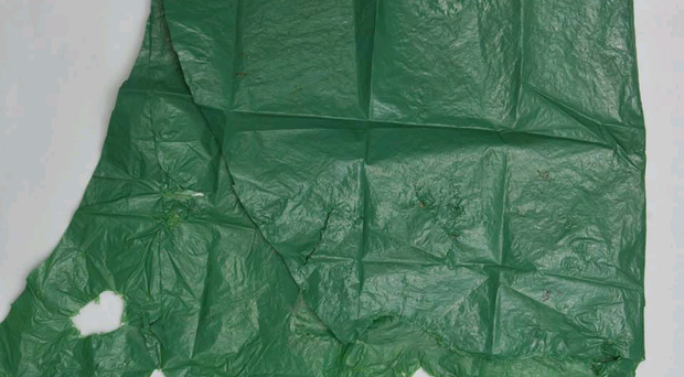 The baby had been placed in a green plastic bag.
