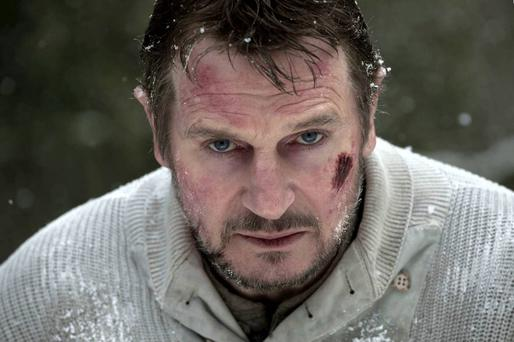 Ballymena-born Liam Neeson starred in The Grey after a string of hit movies including Schindler's List and Taken