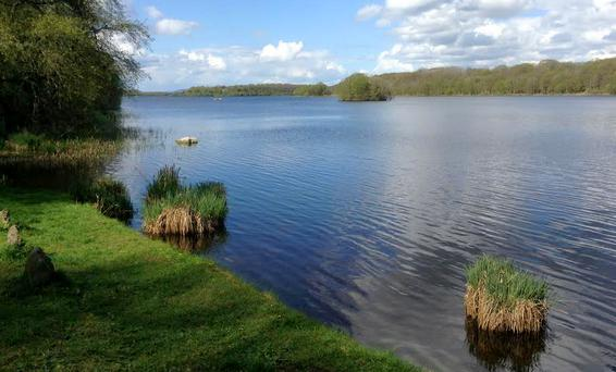 Southern visitors are missing out on the beautiful views of lough Erne, because of the weak euro, and the fact that our hotels have to compete with a low VAT rate in the Republic