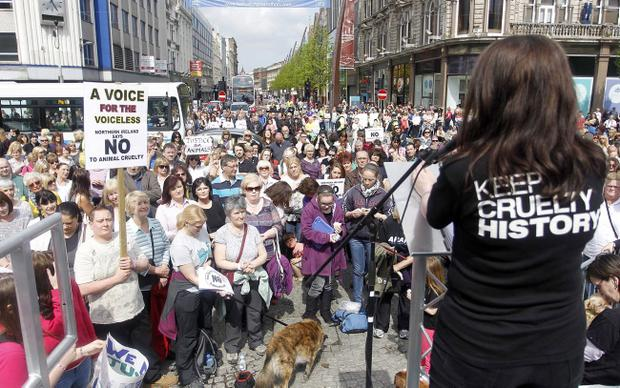Hundreds of people take part in a public rally in Belfast city centre to protest against animal cruelty. Pic Aidan O'Reilly/Pacemaker Press