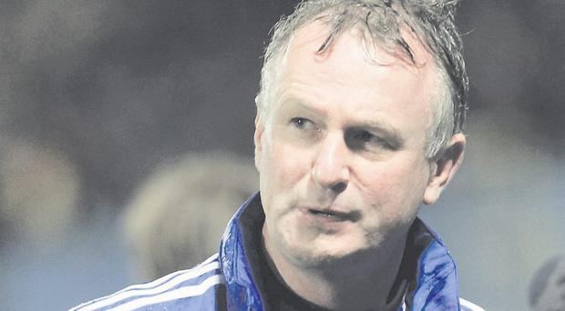 Aiming high: Northern Ireland manager Michael O'Neill