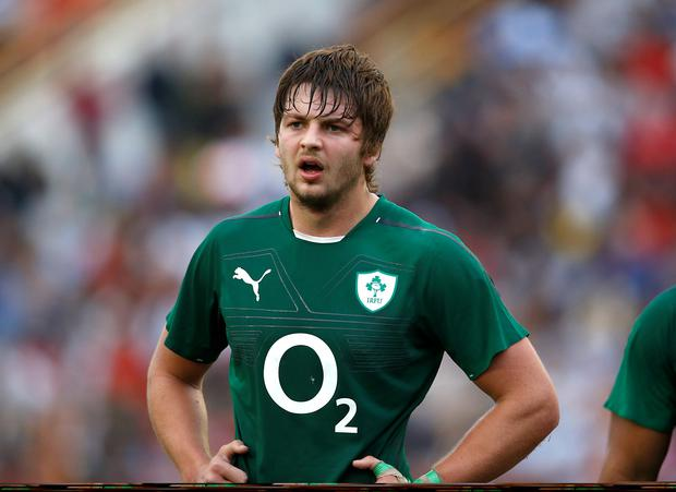 Fine display: Iain Henderson worked tirelessly for Ireland