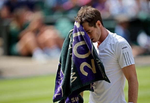 Andy Murray has lost in straight sets to Grigor Dimitrov