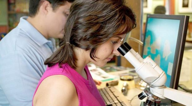 Generic photo of a woman looking in a microscope in a laboratory.