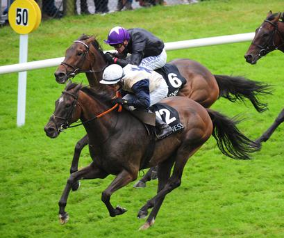 Raise a glass: Artful Artist, with Sean Corby on board, on way to winning yesterday's Galway feature, the Guinness Handicap