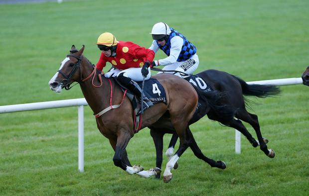 Race 7 Dale Farm INH Flat Race. Our Sox beats Lady In Motion in the 7th Race. Photo by Kelvin Boyes / Press Eye