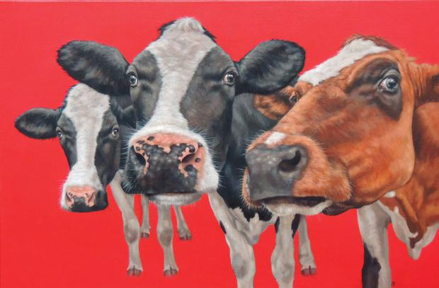 Artist Paul Bell will be holding his first solo exhibition in five years - Not Just Cows - at the Eakin Gallery in Belfast. The artwork will include his well-known paintings of cows on colourful backgrounds, as well as zebras, horses, giraffes, donkeys and more