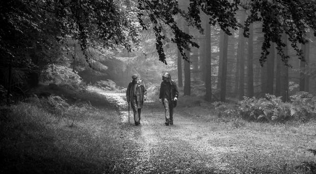 Mark Oliver's composition captured a moment of deep conversation between Joe Tate and Christopher Connolly as they walked in Tollymore Forest, winning the competition's adult category