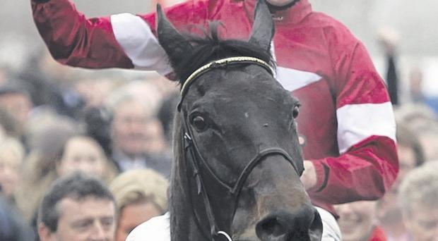 Easy Ryder: Leading jockey Davy Russell can win the Cheering Rory (McIlroy) Hurdle at Downpatrick today on Glen Orchy Lad